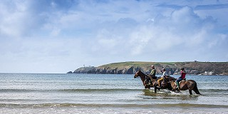 Horses on Red Strand